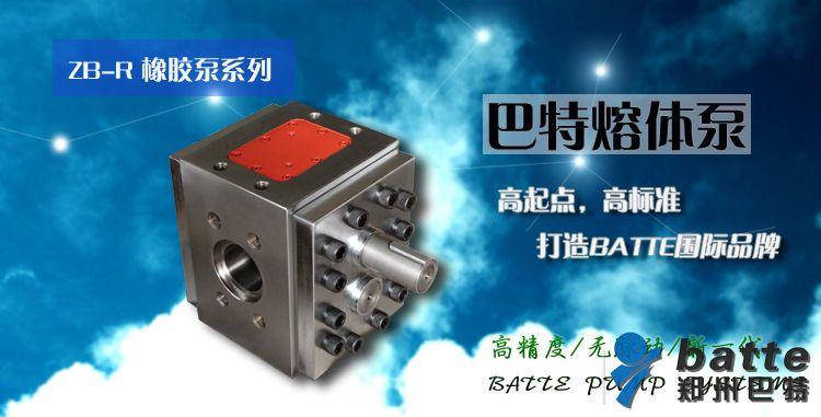 橡胶泵zb-r